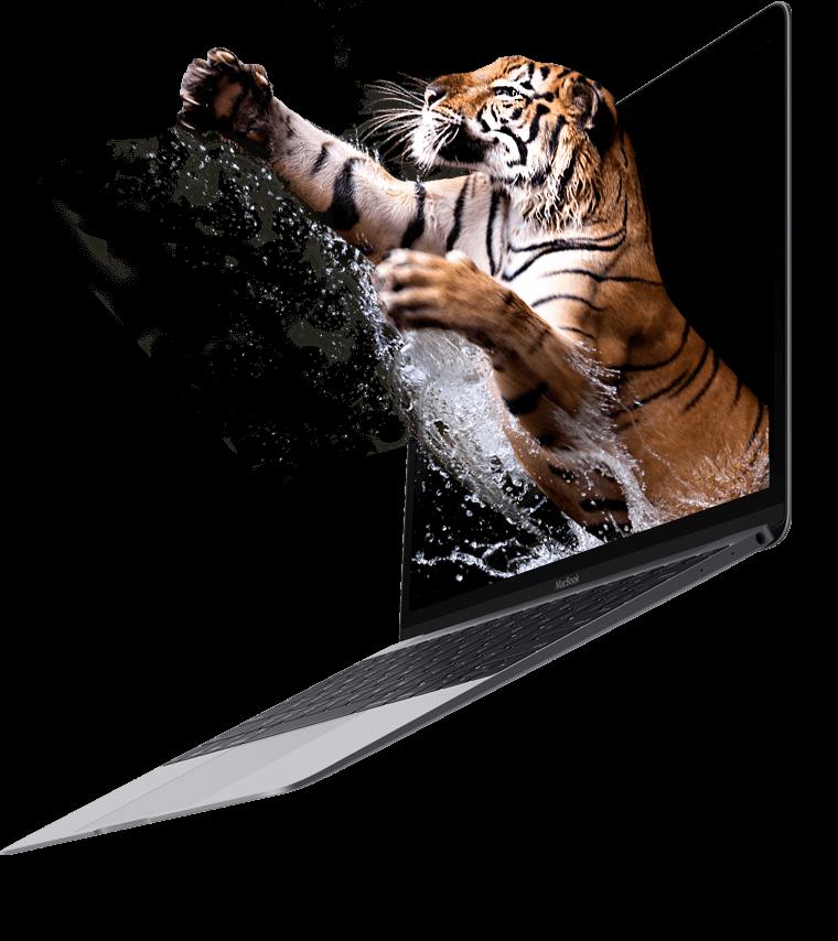 Orange County Web Design Company Oc Digital Marketing Seo